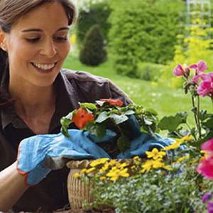 Trucos para cuidar plantas con vinagre