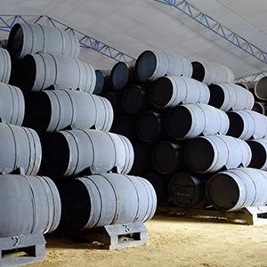 Vinagre de Jerez: todo lo que debes saber sobre tu condimento favorito